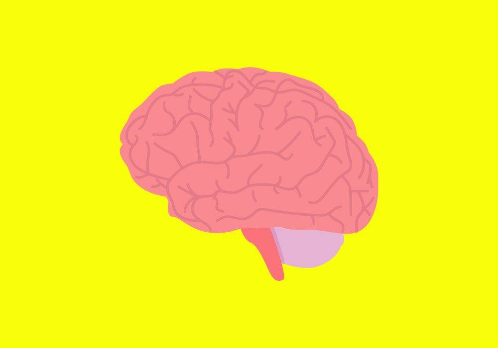 brain-health-illo.jpg